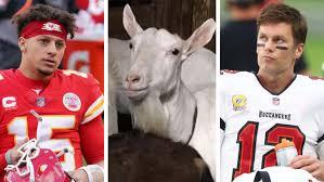 Image result for brady mahomes goat meme